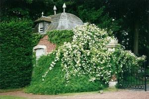 Chateau de Hex, Belgija